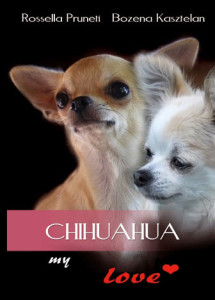 !--chihuahua-my-love-d